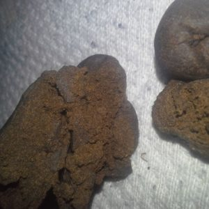 Order Indian Hash online - buy Charas Indian Hash online - cannabis