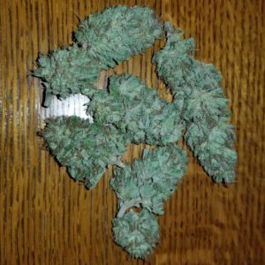 Buy G13 Marijuana Online G13 strain for sale - weed for sale online